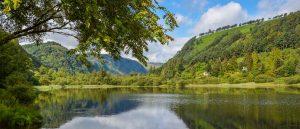 Glendalough Walk B